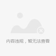 双金属温度计wss - 上海自动化仪表股份有限公司压力